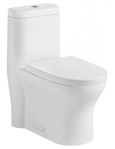 Toilette monopièce