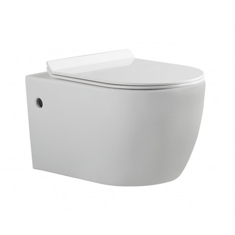 Suspended toilet bowl